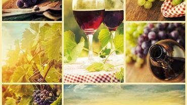 Obecny w winogronach resweratrol korzystnie wpływa na układ krążenia oraz opóźnia proces starzenia