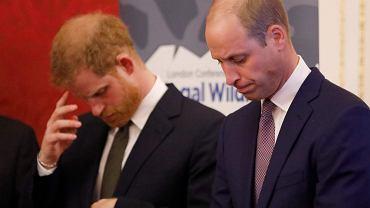Książę William i książę Harry
