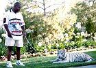 """Mike Tyson zamknął trenera w klatce z tygrysem. """"Musiałem zmienić bieliznę..."""""""