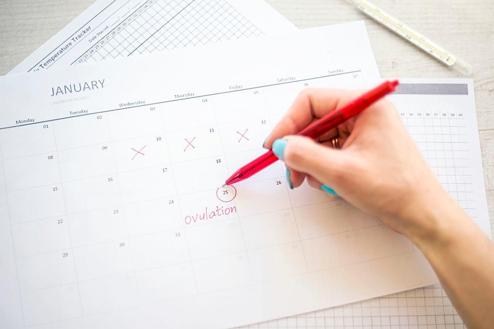 Obserwacja śluzu płodnego i niepłodnego, umiejętność ich rozróżnienia, jest istotą jednej z naturalnych metod antykoncepcji.