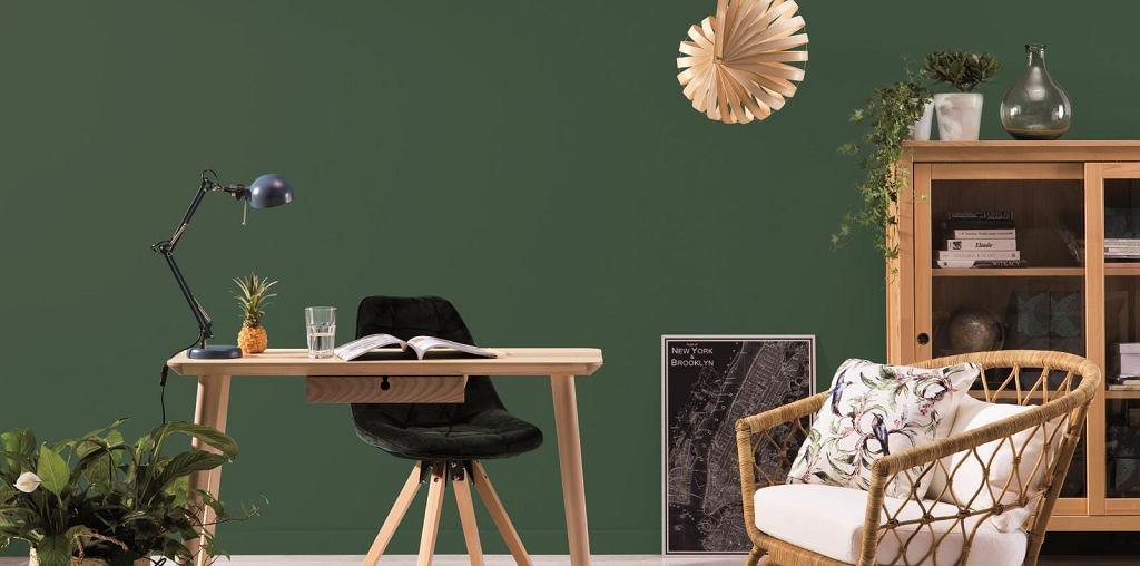 Kolory Beckers: intrygujący odcień zieleni pomoże nam się skoncentrować w domowym biurze