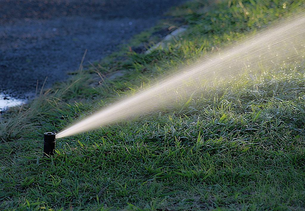 Piaseczno wprowadziło zakaz podlewania trawników wodą z sieci wodociągowej