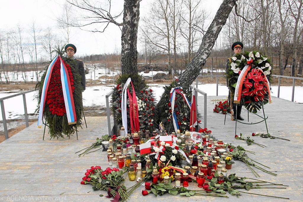 11.04.2011, Smoleńsk, pierwsza rocznica katastrofy, kwiaty złożone pod brzozą o która zawadziło skrzydło prezydenckiego samolotu.