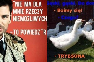 Memy Warsaw Shore, Ekipa z Warszawy