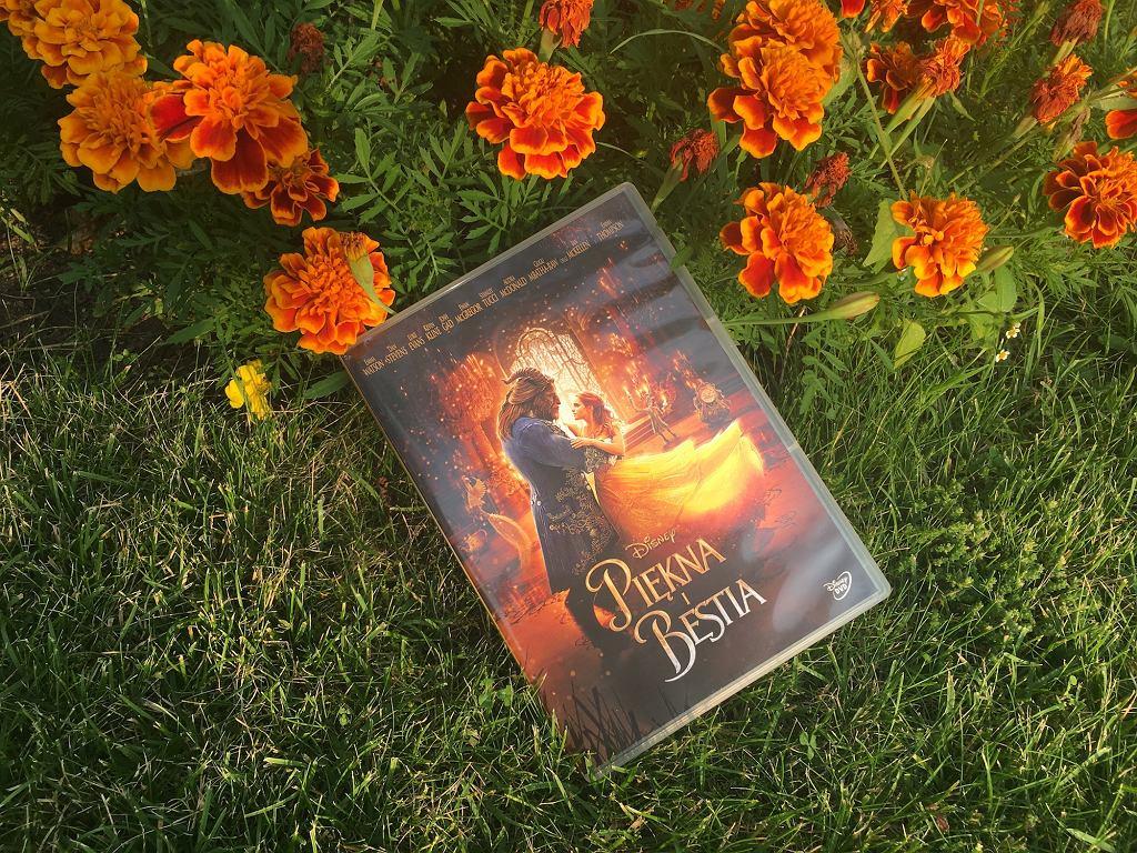 Film 'Piękna i Bestia' w aktorskim wydaniu niedawno zadebiutował na DVD.