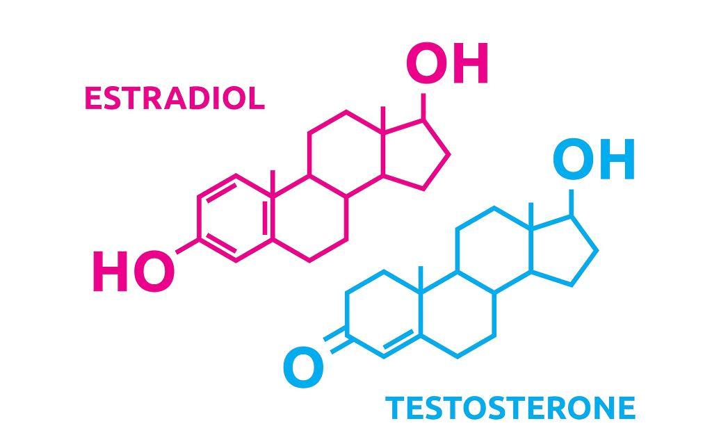 Hormony płciowe odpowiadają za prawidłowy rozwój cech płciowych i prawidłową czynność gonad - u kobiet za prawidłowy przebieg cyklu miesiączkowego i ciąży, u mężczyzn za spermatogenezę. Ale to nie wszystko