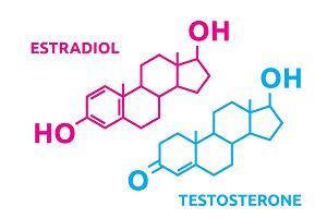 Hormony płciowe u kobiet i mężczyzn - jakie pełnią funkcje?