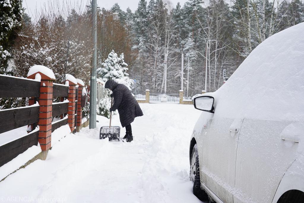 Prognoza pogody na weekend. Powrót zimy i siarczystych mrozów (zdjęcie ilustracyjne)