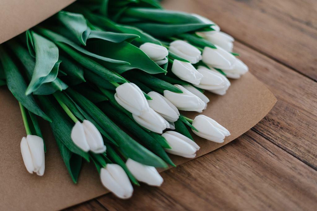 5 marca obchodzimy Dzień Teściowej. Co to za święto? Skąd się wzięło? (zdjęcie ilustracyjne)