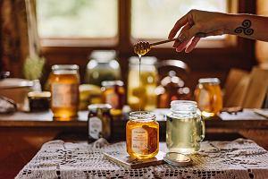 Naturalny, zdrowy i smaczny, czyli pożytki z miodu płynące