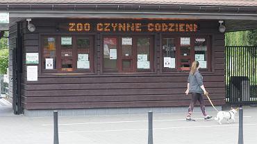 Zoo w Warszawie znów jest otwarte