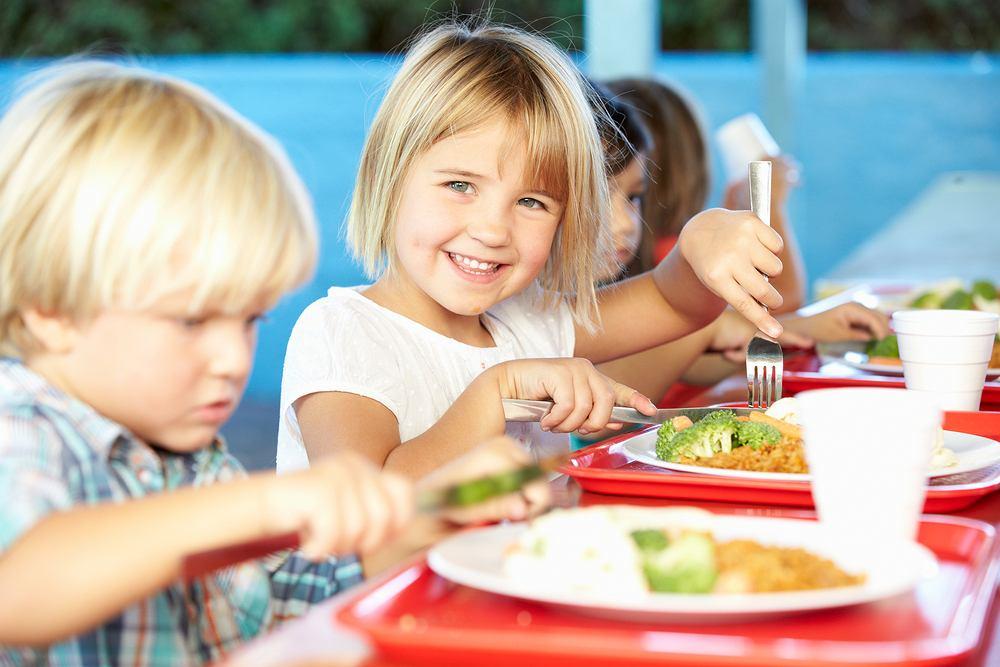Dzienne zapotrzebowanie kaloryczne u dzieci w wieku 2 lat określa się na mniej więcej 1100-1200 kalorii, zaś w wieku 3 lat na 1200-1300 kalorii.