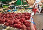 Bieda w królestwie owoców. Jesteśmy potentatem w ich produkcji, ale zysków brak