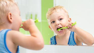 Zęby mleczne to czasowe i pierwsze pokolenie zębów. Jaka jest ich budowa, kiedy zaczynają wypadać a kiedy należy je usuwać?