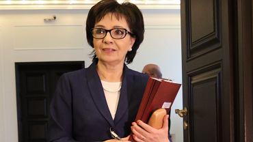 Elżbeita Witek, rzecznik rządu Beaty Szydło