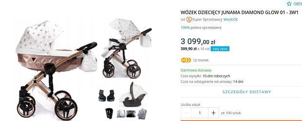 Model wózka, jaki mają Sylwia Przybysz i Jan Dąbrowski