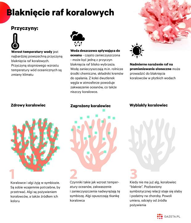 Blakniecie raf koralowych