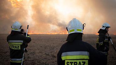 Strażacy gaszą pożar Biebrzańskiego Parku Narodowego, 22 kwietnia 2020