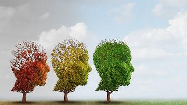 Schizofrenia paranoidalna objawia się rozmaitymi urojeniami