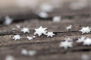 Płatki śniegu Aktualne Wydarzenia Z Kraju I Zagranicy