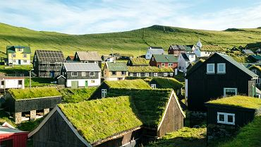 Zielone dachy - zdjęcie ilustracyjne