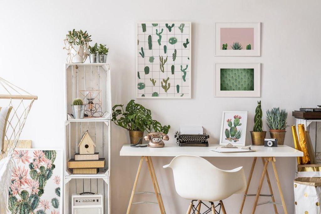 Wzory z kaktusami