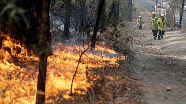 Pożary w Australii, 8.01.2020