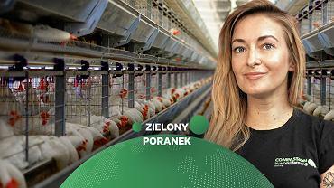 Małgorzata Szadkowska w Zielonym Poranku Gazeta.pl