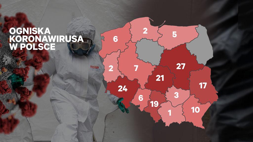Gdzie jest koronawirus w Polsce? Powstała interaktywna mapa, na której można to sprawdzić