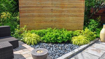 Parawan ogrodowy. Czemu służy i jaki wybrać? Zdjęcie ilustracyjne