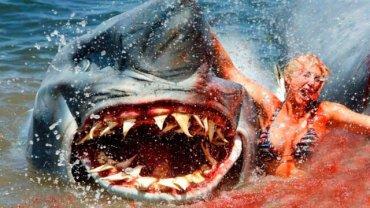 """Dwugłowy rekin atakuje"""