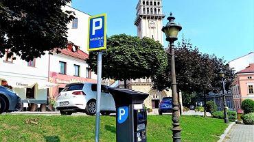 W Bielsku-Białej znowu działają parkometry
