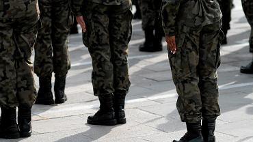 Żołnierze. Zdjęcie ilustracyjne