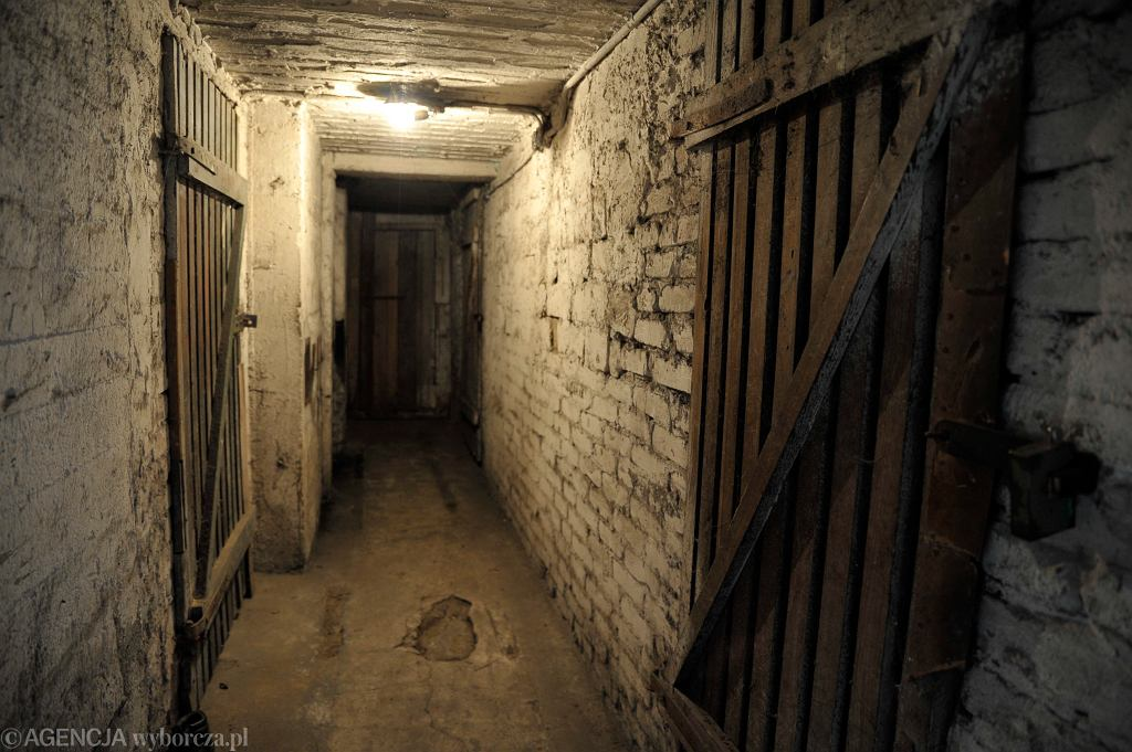Piwnica - zdjęcie ilustracyjne