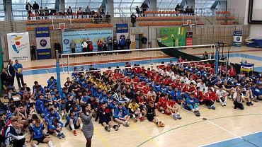 siatkówka, turniej WOLA CUP 2015