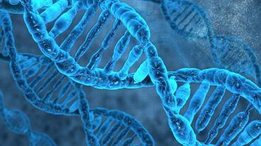 Abetalipoproteinemia to schorzenie metaboliczne uwarunkowane genetycznie