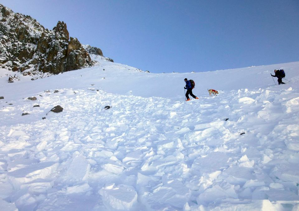 Montana Avalanche Death