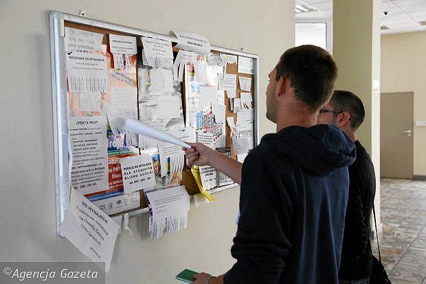 Formularze do publikacji ogłoszeń przetargowych
