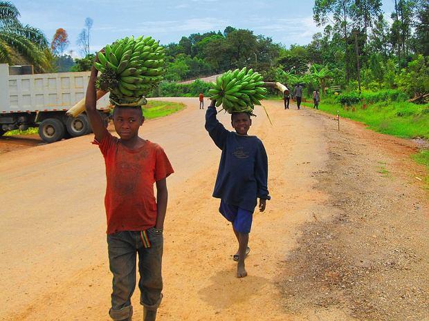 Uganda. Tu bananów nie jada się na surowo