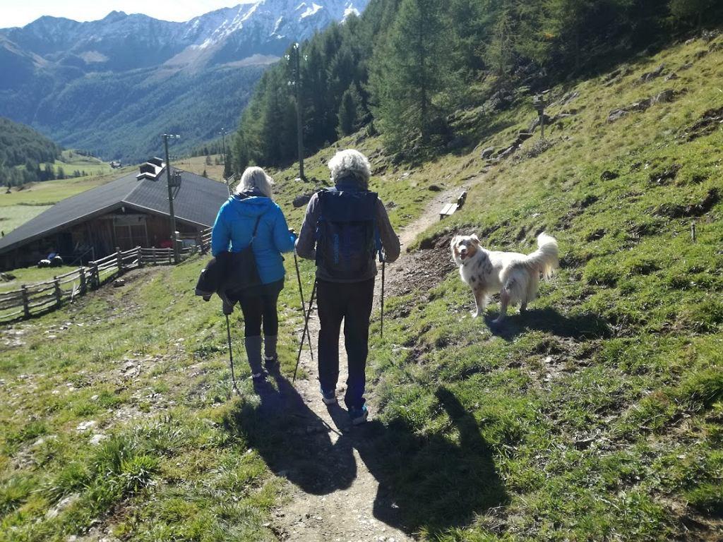 Spacer po górach z Seppem Platzgummerem i Mali każdego przekona do wędrowania