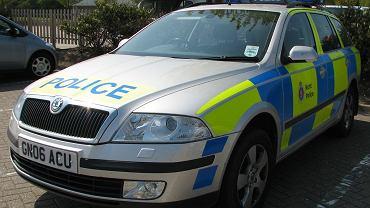 Londyn. Policjant kupował filmy pornograficzne, korzystając w konta telewizji kablowej rodziców, których dziecko niewiele wcześniej zmarło. Zdjęcie ilustracyjne