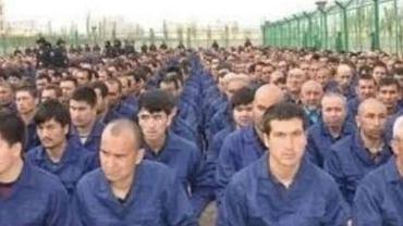 Ujgurzy