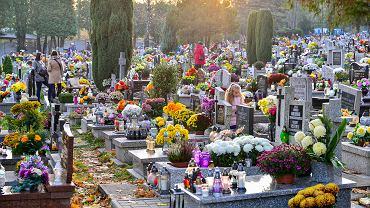 Od rana cmentarze w Bielsku-Białej odwiedziło wiele osób. Także w sobotę na nekropoliach będzie tłoczno. Od rana tłoczno było np. na bielskim cmentarzu komunalnym przy ul. Karpackiej. To największa nekropolia w mieście. W rejonie cmentarza obowiązują zmiany w organizacji ruchu, wyznaczono m.in. dodatkowe miejsca do parkowania. Zmiany obowiązują także w okolicy innych dużych bielskich nekropolii.