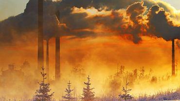Ogrzewanie i zużycie prądu odpowiadają za kolejną jedną trzecią emisji dwutlenku węgla statystycznego Polaka
