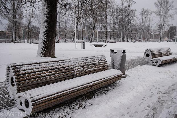 Zdjęcie numer 35 w galerii - Wrocław pod śniegiem. Zobacz zimowe zdjęcia z centrum miasta [FOTO]