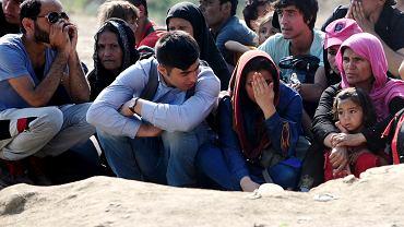 Polska zdaniem Brukseli powinna przyjąć łącznie 3621 uchodźców, w tym 2659 z Włoch i Grecji. Stanęło na 2000 osób. Na zdjęciu: migranci na granicy Grecji i Macedonii
