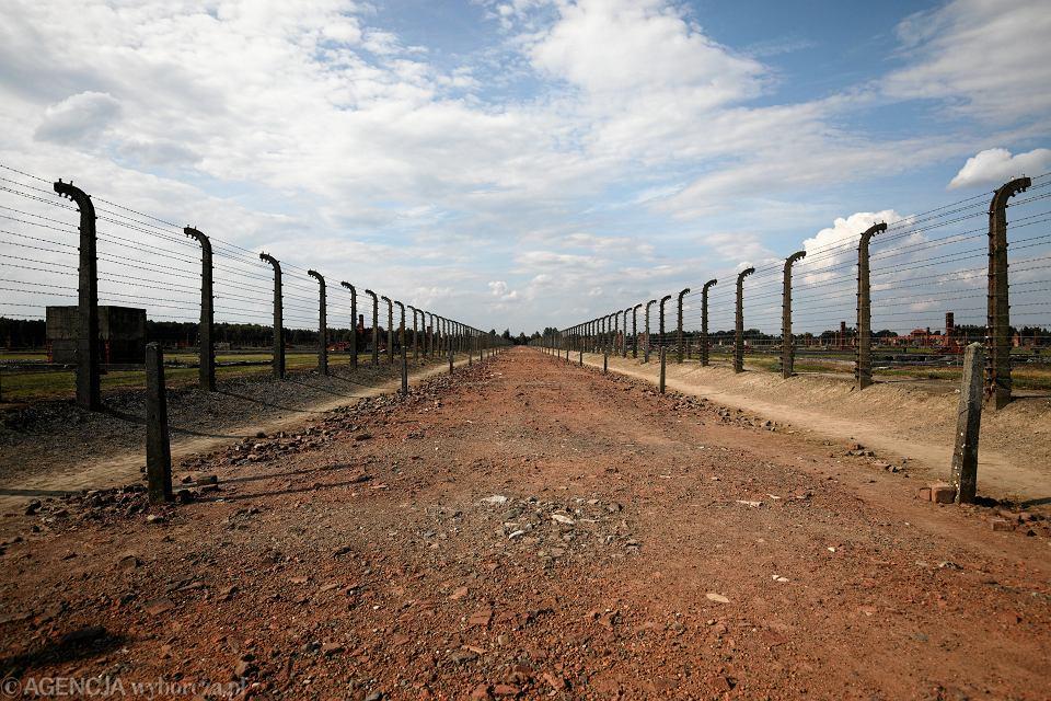 Beata Szydło w Radzie Muzeum Auschwitz Birkenau. Członkowie rezygnują. 'Upolitycznienie'