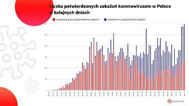 Polska z prymusa stała się jednym z największych ognisk UE. Nie tylko na Śląsku jest problem [WYKRES DNIA]