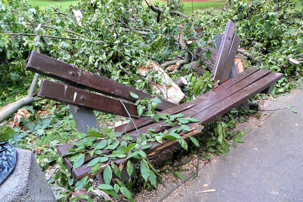 W dniu 20.08.2018 na kobietę z dzieckiem spadł złamany konar drzewa