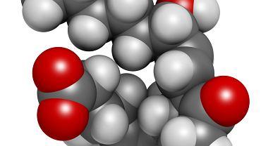 Prostaglandyny to grupa hormonów zwierzęcych, które regulują procesy fizjologiczne